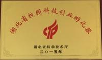 湖北省校园科技企业孵化器